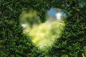 Attract love meditation